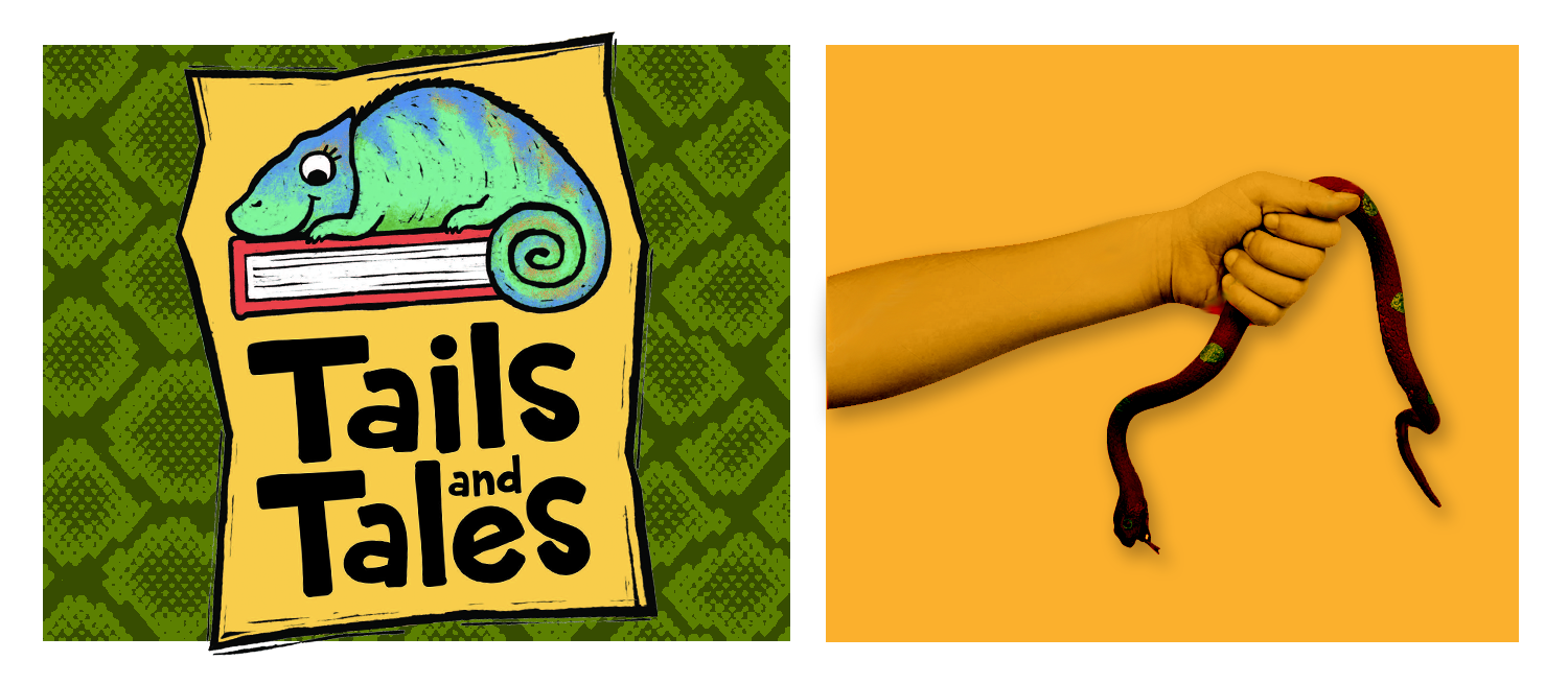 Tails and Tales logo with chameleon on green snakeskin background. Hand holding rubber snake on orange background.