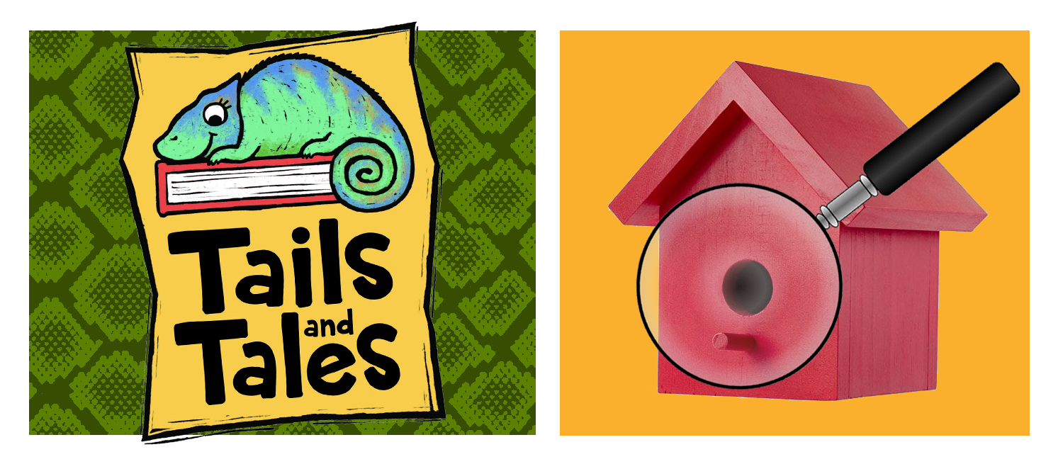 Tails and Tales logo with chameleon on green snakeskin background. Red birdhouse with magnifying glass on orange background.